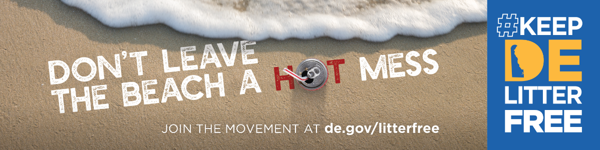 Don't Leave the Beach a Hot Mess campaign graphic